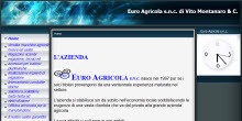 Pagine esempio euroagricolasnc.it.gg
