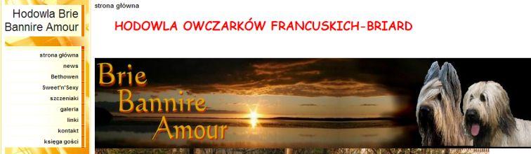 Przyklad briebannireamour.pl.tl
