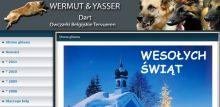Przyklad wermut-dart.pl.tl