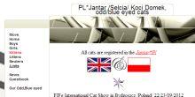 Przyklad selcia2.pl.tl
