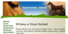 Przyklad stajniakaliska.pl.tl